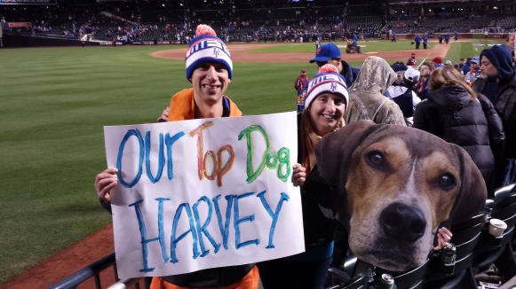 top dog harvey stadium
